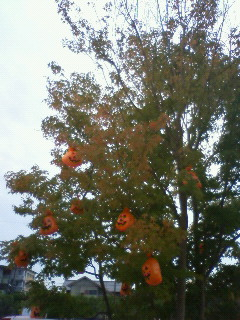 12hallo-tree1